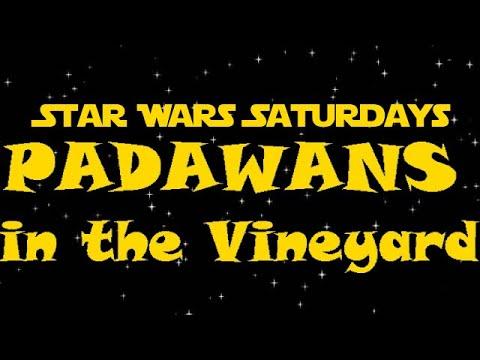 SWS: Padawans in the Vineyard (1 of 4)